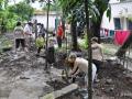 bouwkamp2012_14
